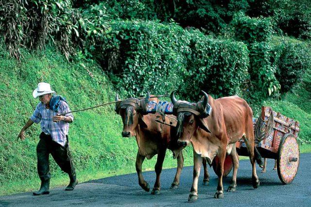 Voyage Sur Mesure Costa Rica