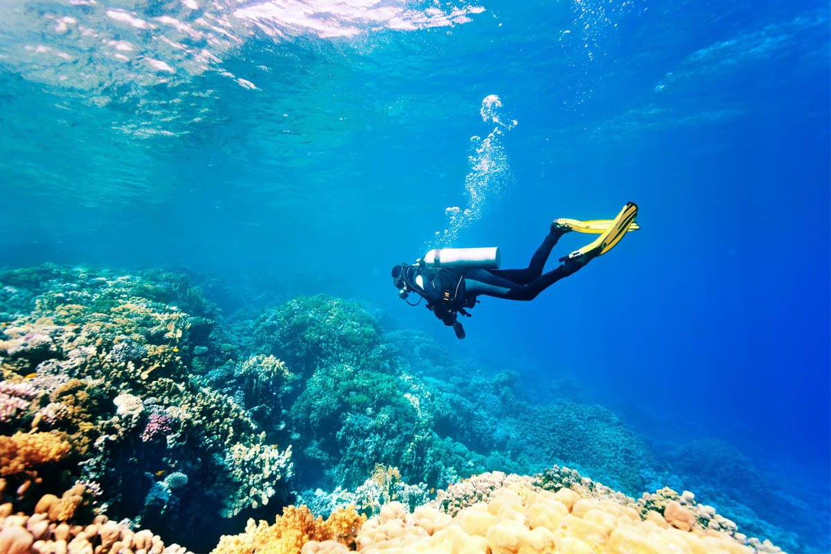 Plongee sous marine Costa Rica