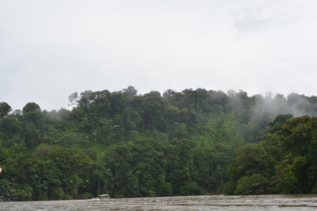Les canaux de Tortuguero