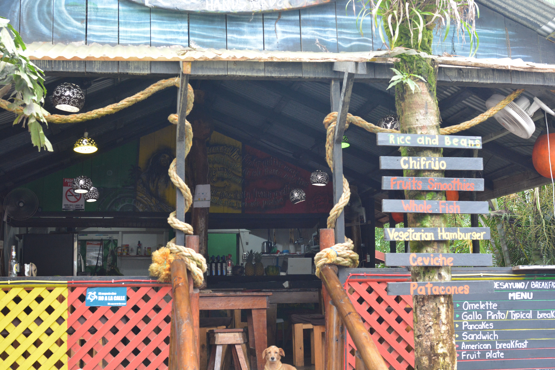 un restaurant à Tortuguero